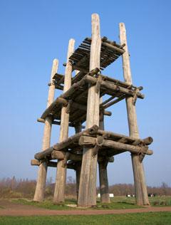 クリ材で建てられた大型掘立柱建物の写真